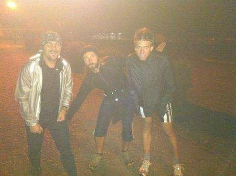 Gorile u magli